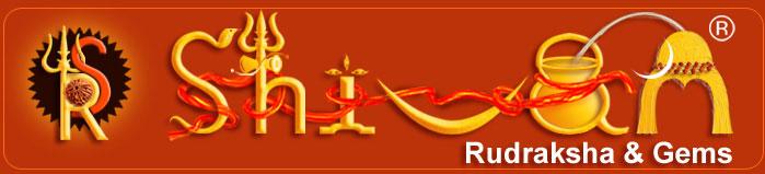 18 Siddhas - Siddhar - Shivam Rudraksha, Rudraksha Beads